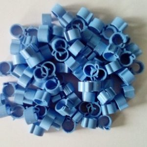 CLEME porumbei 8pe8 albastre