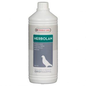 Herbolan Porumbei